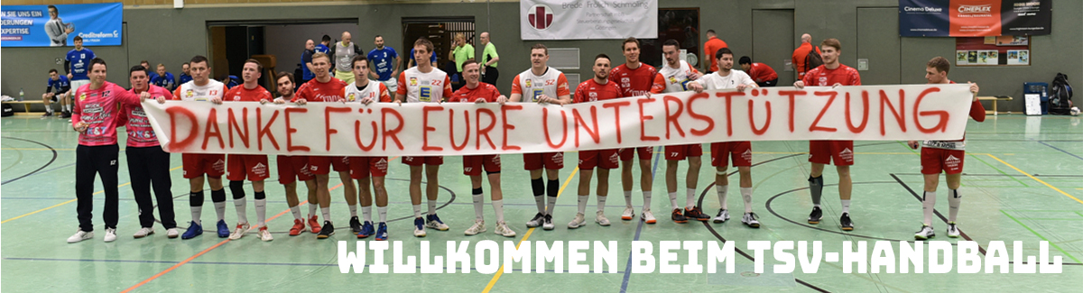 Headerbanner Handball